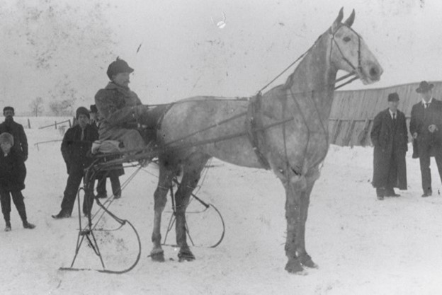 man on a horse-drawn ice racing sled